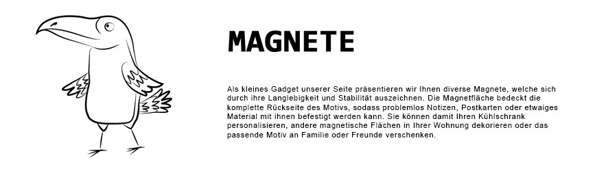 Bildmagnete, Fotomagnete, Kühlschrankpoesie | Wanlenart.de